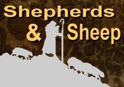 Shepherds & Sheep